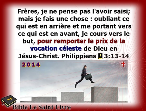 petit_373